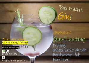 20_02-28 Plakat Gin-Tasting mI
